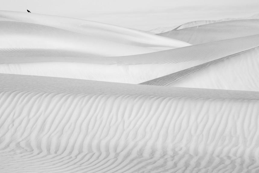 Dunes of Nude 98