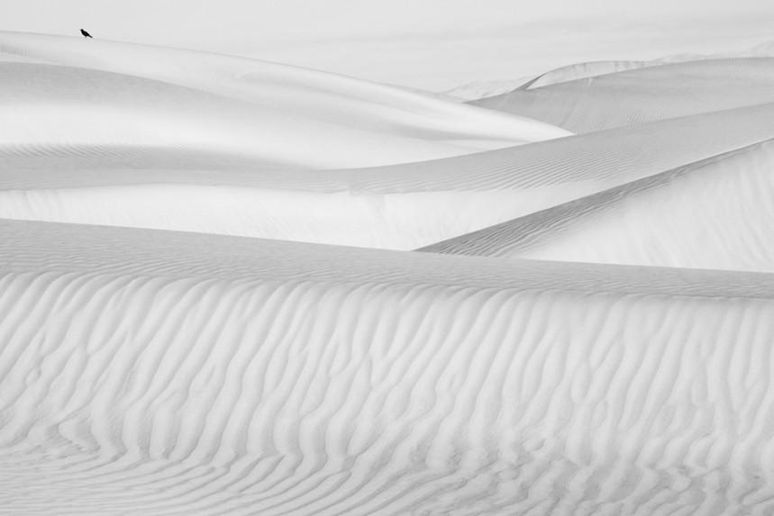 2_2014-2-1-Dunes-of-Nude-98-Final-2-26-2014-1000