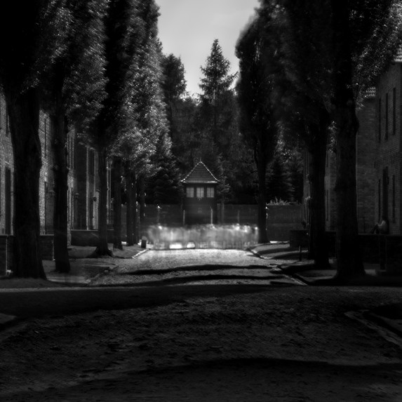 Auschwitz No 3 Vision