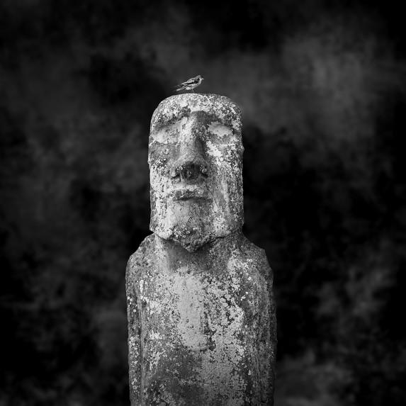 Moai Sitting for Portrait No 2 - Vision