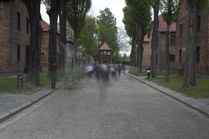 Auschwitz No 14 Eye