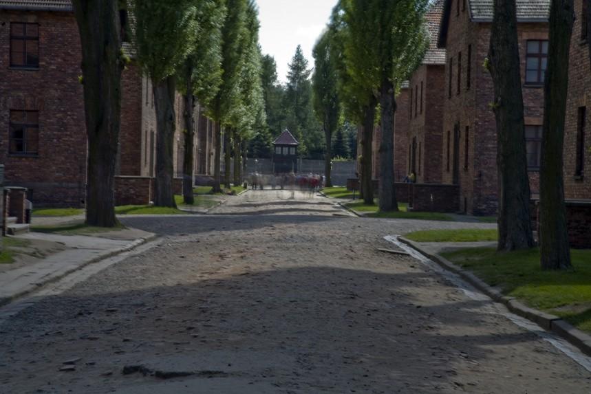 Auschwitz No 3 Eye