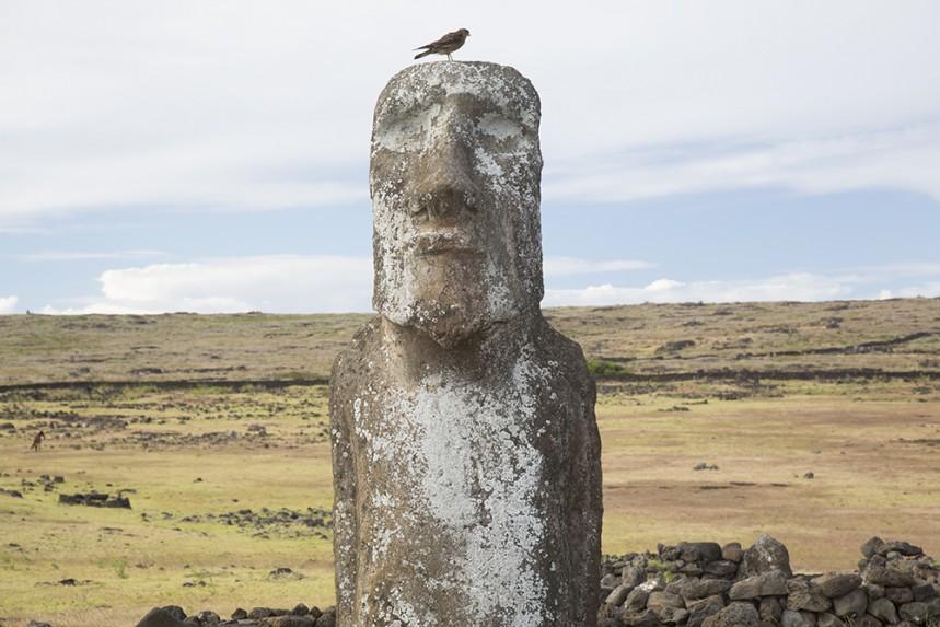 Moai Sitting for Portrait No 2 - Eye