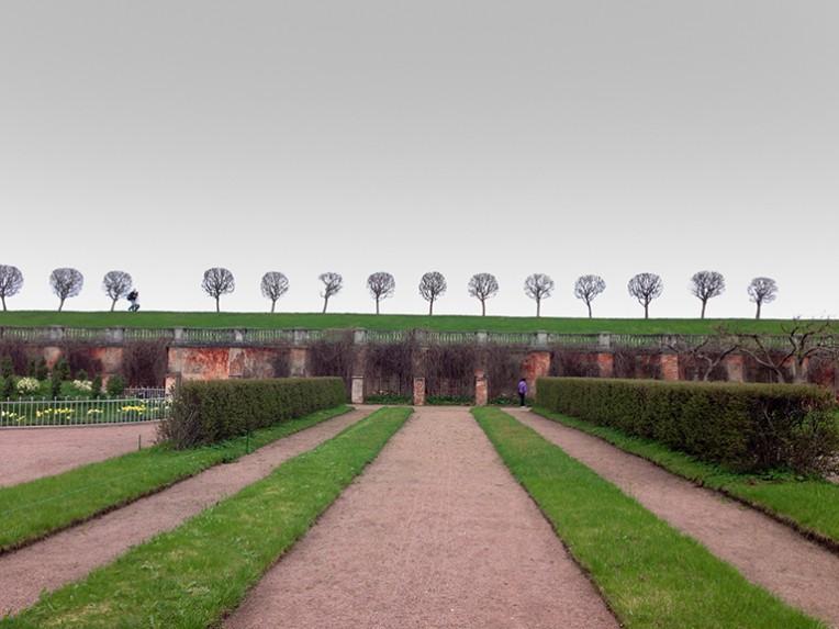 Peterhof Trees - Eye (iPhone 8 MP image)