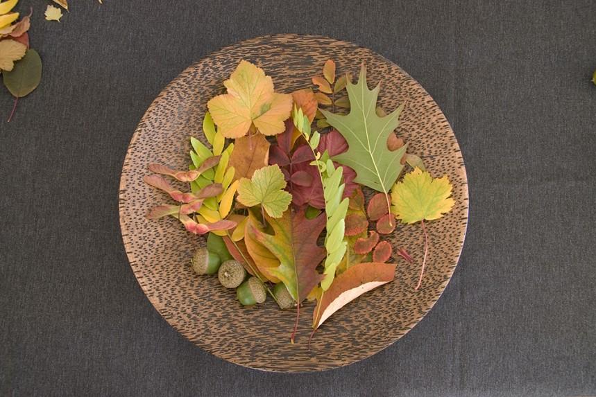 Plate of Leaves - Eye