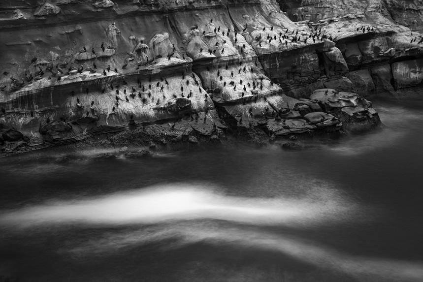 La Jolla Rock and Water Detail No 11