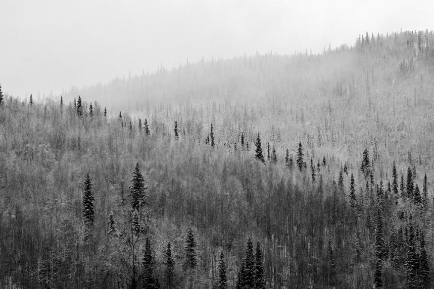 Alaska No. 23