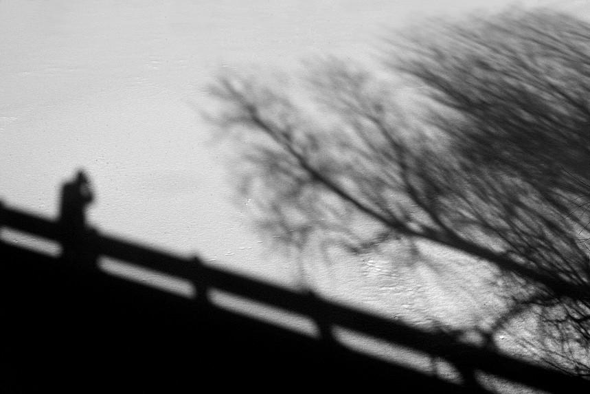 Shadow on Bridge