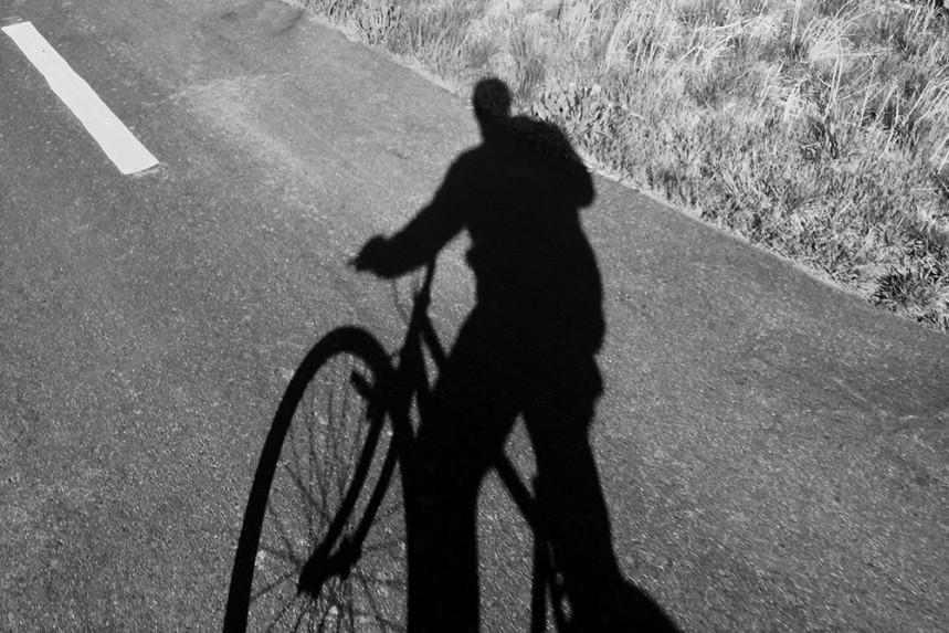 Self Shadow, Bellvue
