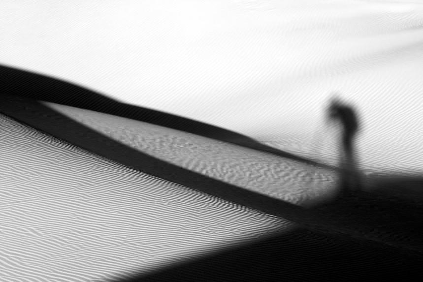 Self-Shadow, Mesquite Dunes No 2