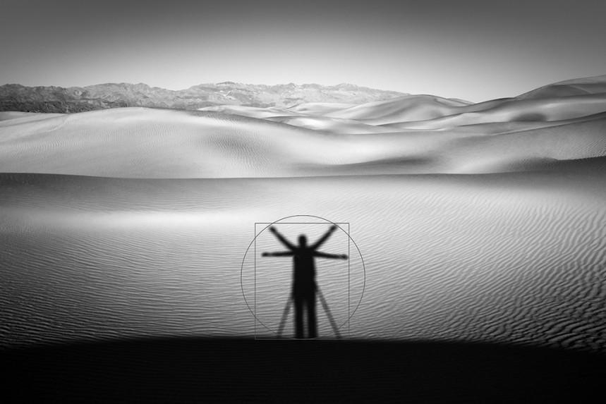 Self Shadow da Vinci