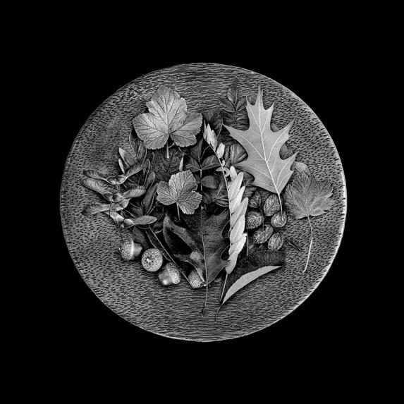 Plate of Leaves