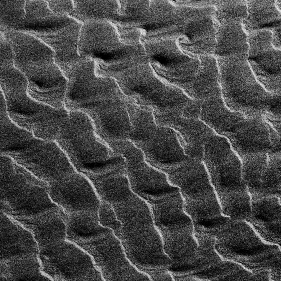 Sand Detail No 1