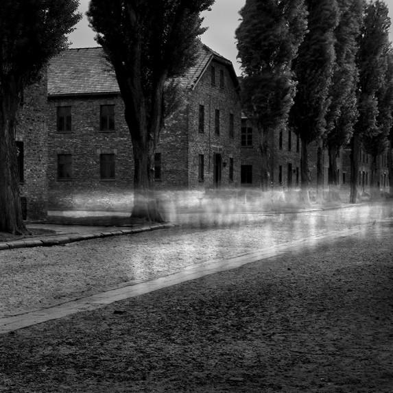 Auschwitz No 15
