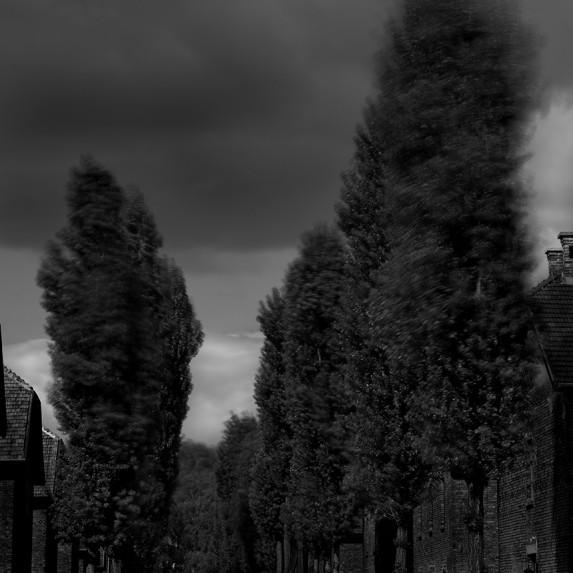 Auschwitz No 16