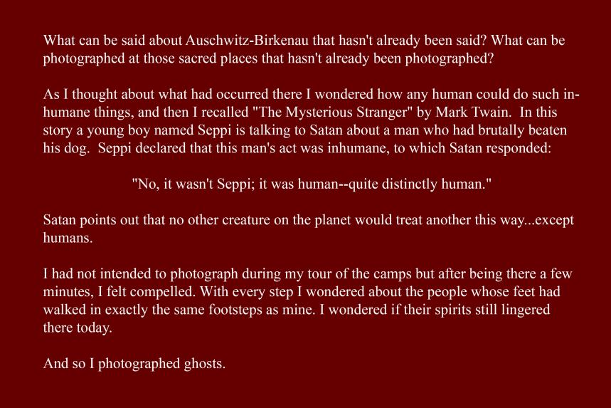 Artist Statement - The Ghosts of Auschwitz-Birkenau