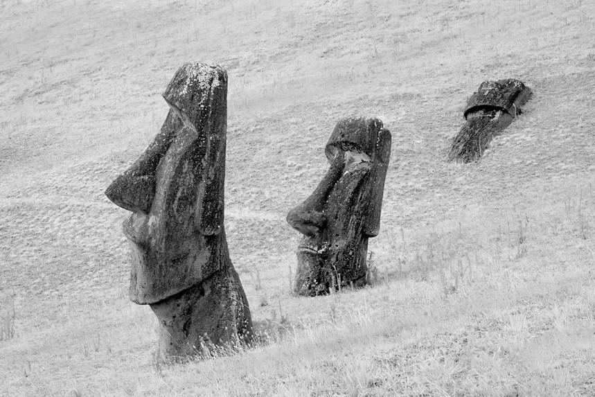 Moai at Rano Raraku No 8