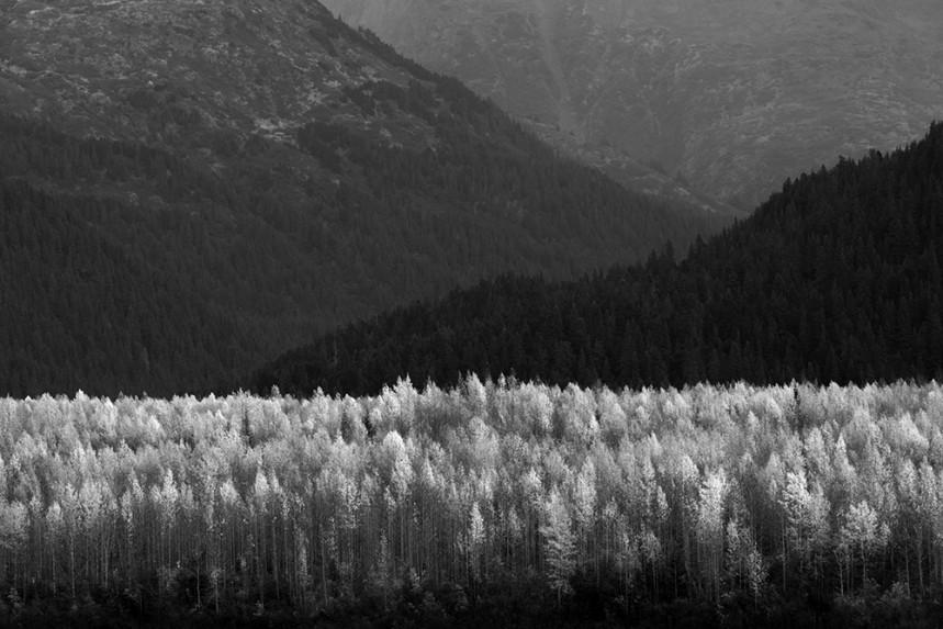 Alaska No. 32