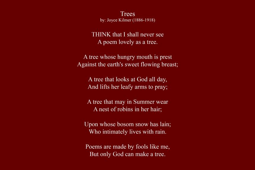 Artist Statement - Trees